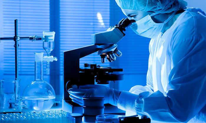 Ученые создали первый в мире синтетический микроорганизм с минимальным геномом