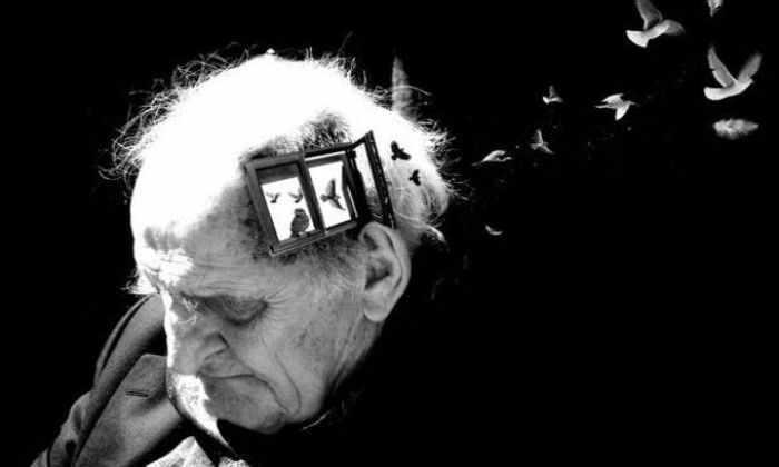 Бразильцы усовершенствовали лекарство от Альцгеймера