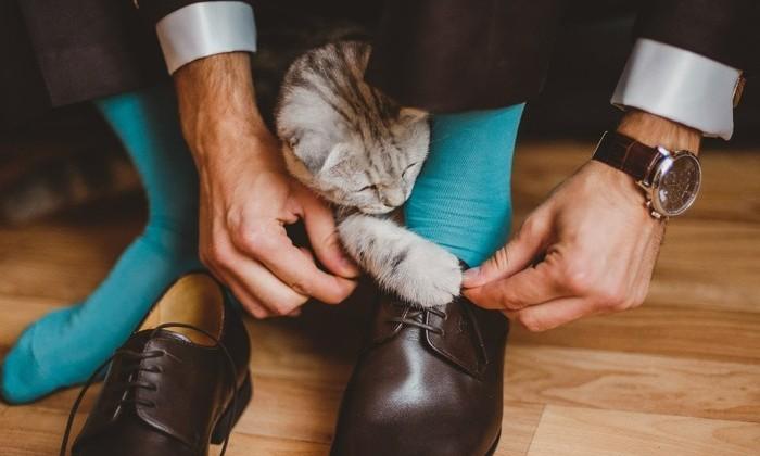 Физика объяснила, почему развязываются шнурки