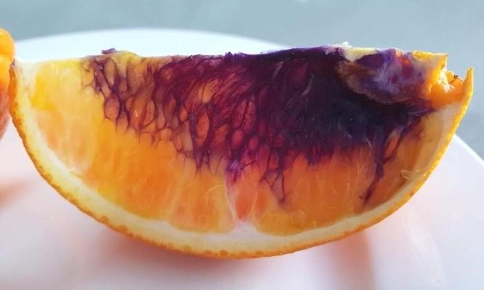 В Австралии нашли фиолетовый апельсин. Объясняем, почему он такой