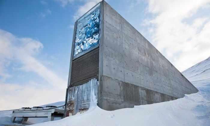 На Северном полюсе хранятся более 865 тысяч семян на случай Судного дня