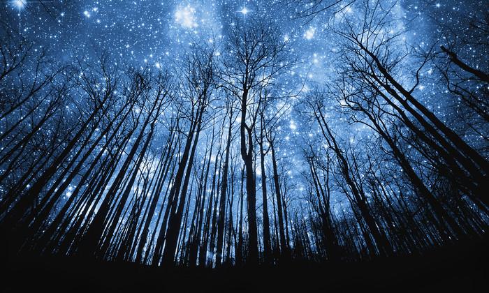 В открытом доступе: опубликован самый большой каталог ближайших звезд